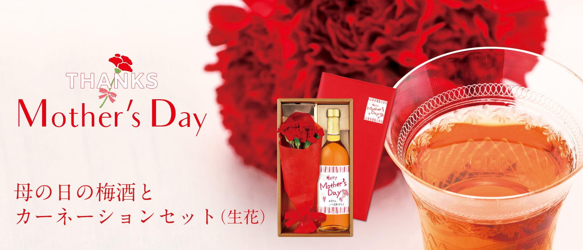 母の日の梅酒とカーネションセット(生花)(原酒 紀州絵巻720ml カーネーション(生花))