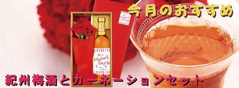 今月のおすすめ 【母の日】紀州梅酒とカーネーションのセット